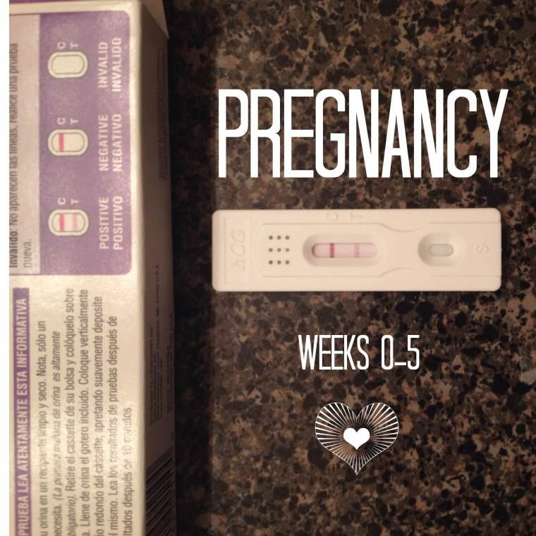 PregnancyWeek0-5_ReadySetSarahBlog