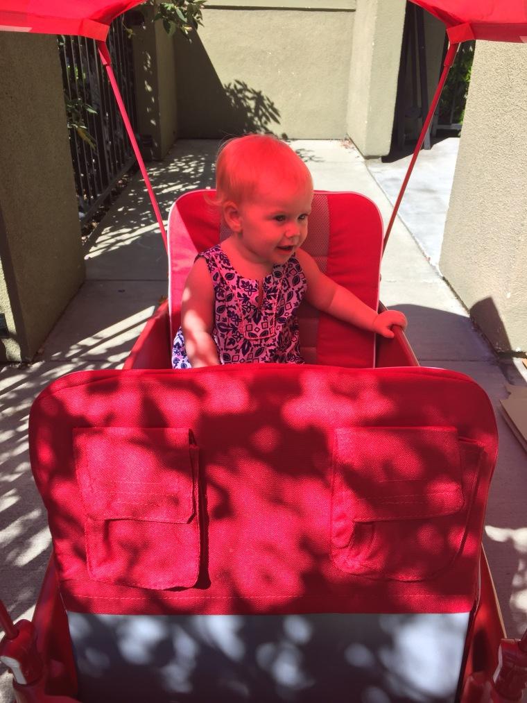 Ziva in her wagon.